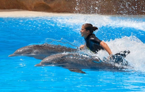 Activity examples every traveler will enjoy with Krystal Cancun Timeshare this fall.