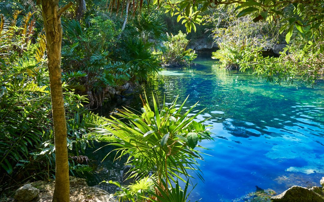Krystal Cancun Timeshare Reviews Cenotes of Cancun